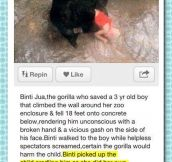 Faith In Gorillas Restored