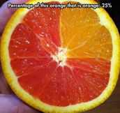 A Healthy Way To Show Percentages To Kids