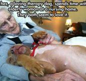 Cuddling Is The Best Medicine