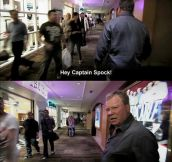 The Wrath Of Shatner