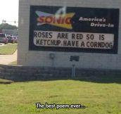 Sonic's Shakespearean Poem