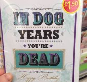 Birthday Cards Are a Dog Eat Dog Kind Of World