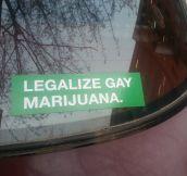 I Have A New Favorite Bumper Sticker