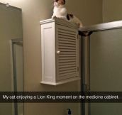 Everything The Light Touches, Is Our Bathroom