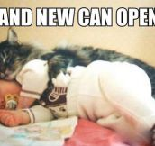 The Only Real Reason Why Cats Snuggle With Babies