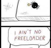 She's a Proud, Independent Spider