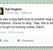 Owner Is The Best Dog Adviser