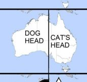 Dog And Cat Face In Australia
