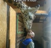 Unconditional Zoo Love