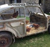 Chicks Love a Man With a Nice Car