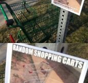 Where Random Shopping Carts Come To Die