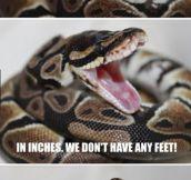 Measuring a Snake