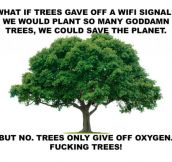 If Trees Had Wi-Fi