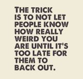 The Only Trick You Need To Learn In Life