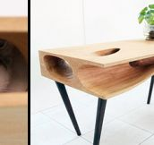 Desk for Cat Owners (10 Pics)