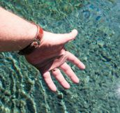 Clearest Water in the world is in NZ