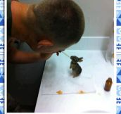 Good Guy Marine And His Bunnies