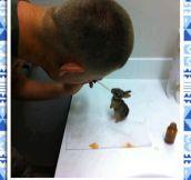 Good Guy Marine And His Bunnies