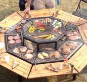 I Found My New Summer Project