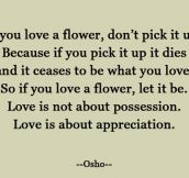 Appreciation, Not Possession