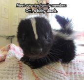 New Family Member