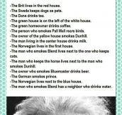 The Einstein's Riddle
