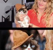 Grumpy Cat Looking Fancy On The MTV Awards