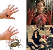 Spider Or Crab