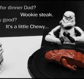 Stormtrooper's Family Dinner
