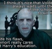 Because A Wizard's Education Is Important