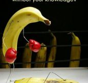 First Rule Of Bananaclub: You Do Not Talk About Bananaclub