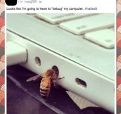 Computer Debug