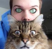 Eye-Swaps Make Things Creepy