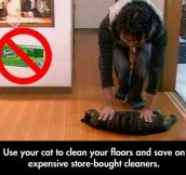 Tired Of Wasting All Your Money In Cleaning Products?