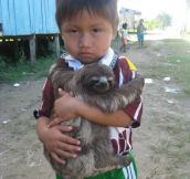 A Child And His Sloth Hanging Out On The Amazon