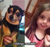 Incredible Resemblance