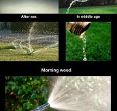A Guide To How Men Pee