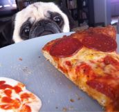Me On a Diet