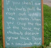 Be a Considerate Thief