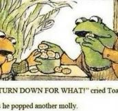 Toad Knows How To Party