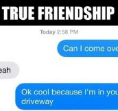 True Friendship Is Knocking