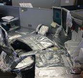 Foiled For The Last Time