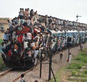 Transportation Overloaded…(26 Pics)