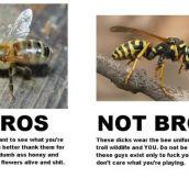 Bros & Not Bros