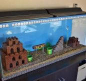 BEST. FISH TANK. EVER.