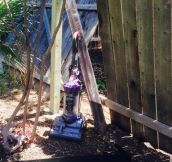 Improvised dog fence.
