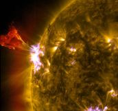 Amazing Image Of The Solar Flare