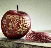 Apple That Was Carved With Incredible Detail
