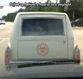 Found A Zombie Outbreak Response Team