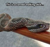 Amazingly Realistic Walking Stick